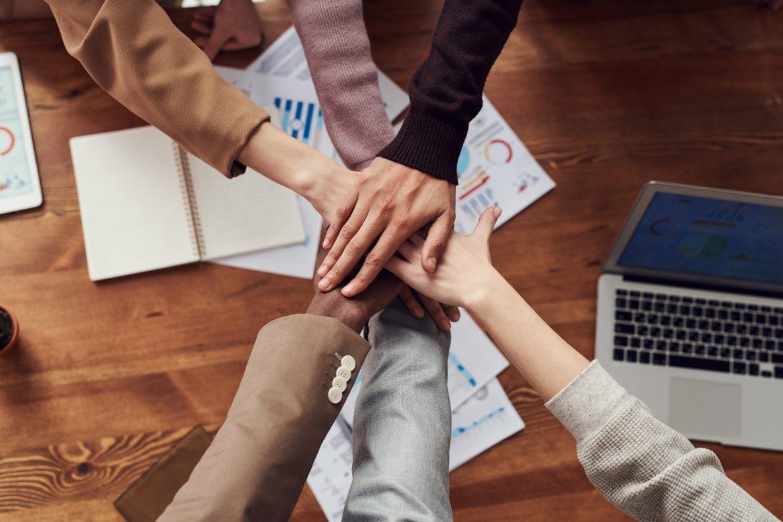 conseil en management et organisation en équipe